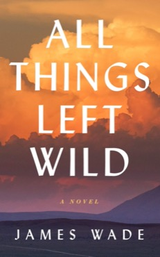 Wild, and the Problem of Evil